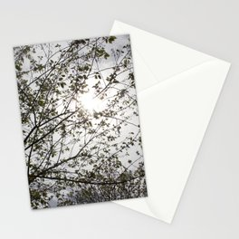 Bright Trees Stationery Cards