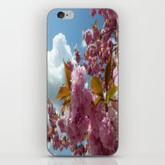 Reach to the sky iPhone & iPod Skin