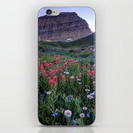 Mt. Timpanogos Wildflowers At Sunset iPhone Skin