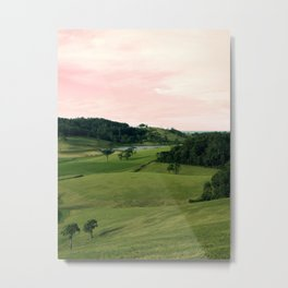 Hillside Metal Print