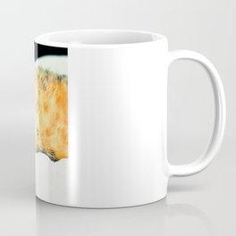 Кошка Coffee Mug