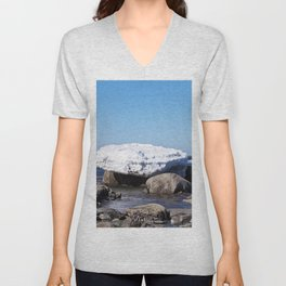 Perched on the Boulders Unisex V-Neck