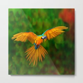 Flying Golden Blue Macaw Parrot Green  Art Metal Print