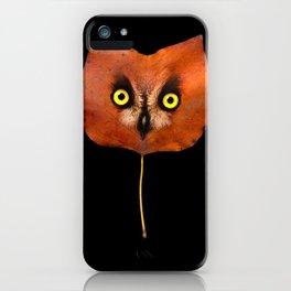 Autumn Owl-3 iPhone Case