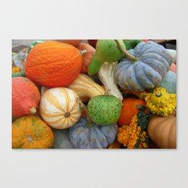Autumn Gourds Canvas Print