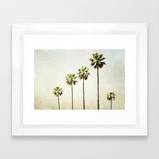 Five Palm Trees Framed Art Print