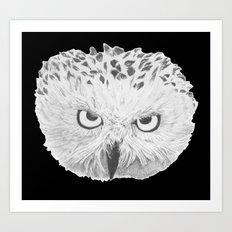 Snowy Owl Black Art Print