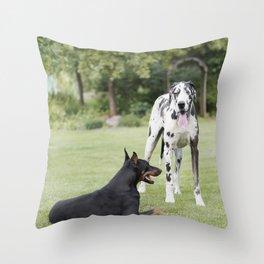 Harlequin Great Dane and Doberman Pinscher Throw Pillow
