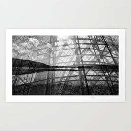 Caged Potomac Art Print