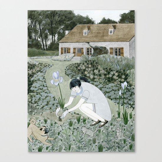 Planting Irises Canvas Print
