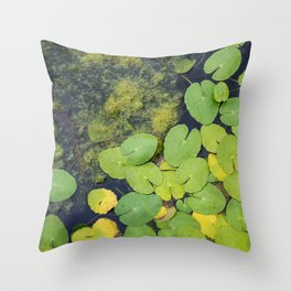 Pond by Althéa Photo Throw Pillow