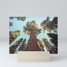 The Largest Tree in the World Mini Art Print