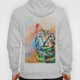 Cat 643 Hoody