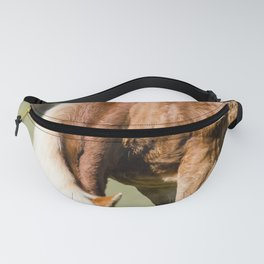 Grazing Horse Fanny Pack