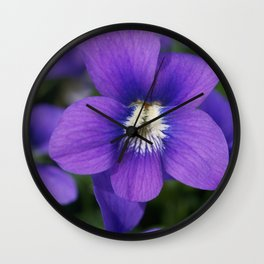 Violets Are Not Blue Wall Clock