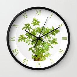 Pelargonium citrosum green plant Wall Clock