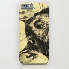 Rat 4 iPhone 6 Slim Case