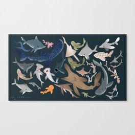 "FINconceivable Still ""Sharks"" Canvas Print"