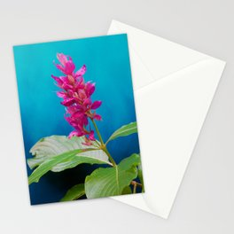 Tropical Blue 2 Stationery Cards