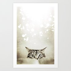 Cat's Eyes - for iphone Art Print