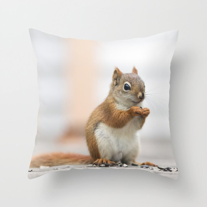 Red Squirrel 3 Throw Pillow By Stephaniekhoward Society6