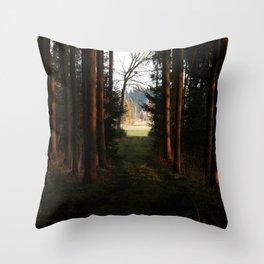 the passage  Throw Pillow