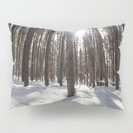 Yellowstone National Park - Lodgepole Forest 2 Pillow Sham