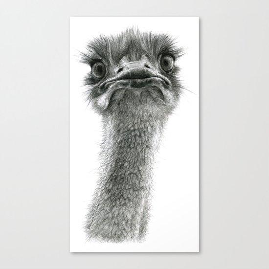 Cute Ostrich SK053 bis Canvas Print