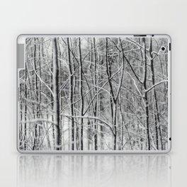 Winter gris Laptop & iPad Skin