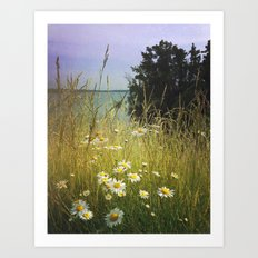 Summer Solstice Art Print