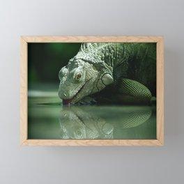 Drinking Iguana Framed Mini Art Print