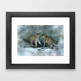 Playful Tiger Cubs Framed Art Print