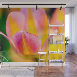 Exquisite Tulip Flowers Wall Mural