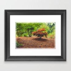 Mini Maple Framed Art Print