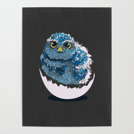 Baby owl Poster