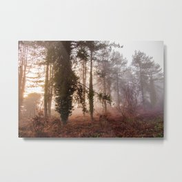 Sunrise over a foggy morning in a forest Metal Print