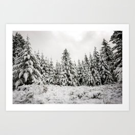 Forest Chorus - 39/365 Art Print