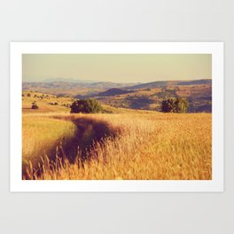 Dream it for your Dreams Art Print