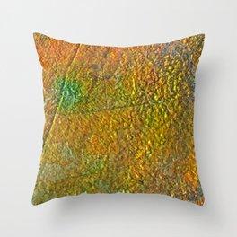 Ammolite Throw Pillow