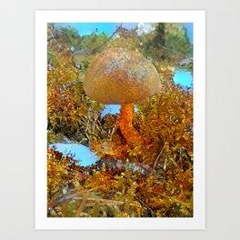 Pastell Bolete Art Print
