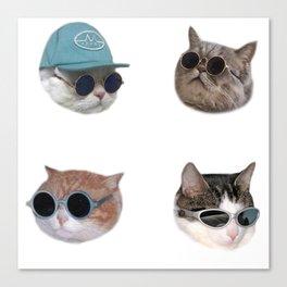 Cool Cats #1 Canvas Print