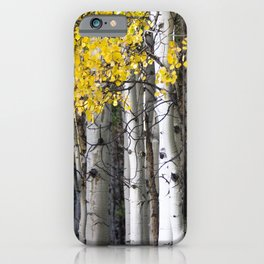 Yellow, Black, and White // Aspen Trees in Crested Butte iPhone Case