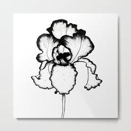 Iris - Black & White Metal Print