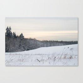 Powdered Snow Scene Canvas Print