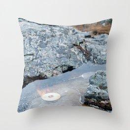 Burning Disc Throw Pillow