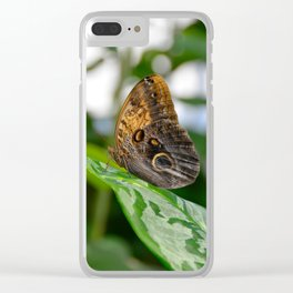 Owl Eye Butterfly by Teresa Thompson Clear iPhone Case