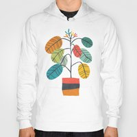 plant Hoodies featuring Potted plant 2 by Picomodi