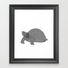 Turtle Illustration B/W Framed Art Print