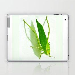 Kadydid Laptop & iPad Skin