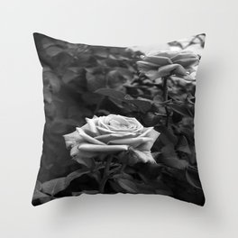 Pink Roses in Anzures 5 B&W Throw Pillow
